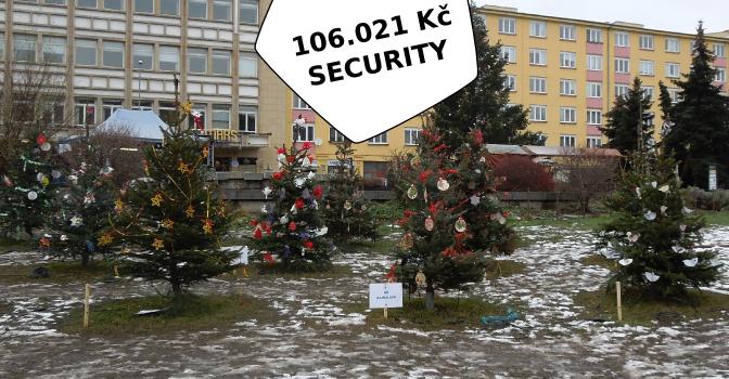 Ostře sledované vánoční stromky